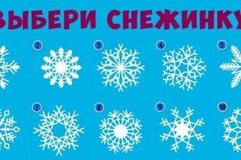 Выбери снежинку
