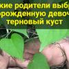 Жестокие родители выбросили новорожденную девочку в терновый куст
