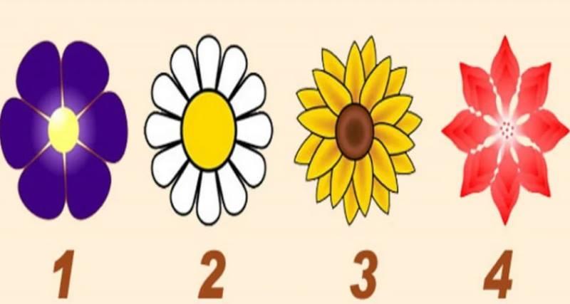 Выберите цветок и откройте для себя сообщение от вашего ангела-хранителя