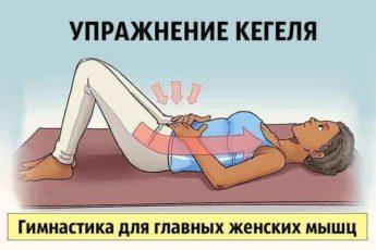 Упражнение Кегеля. Гимнастика для главных женских мышц