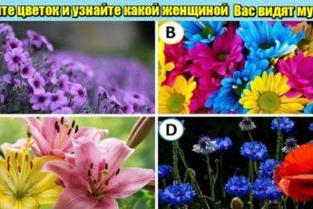 Психологический тест: Выберите цветок и узнайте какой женщиной Вас видят мужчины