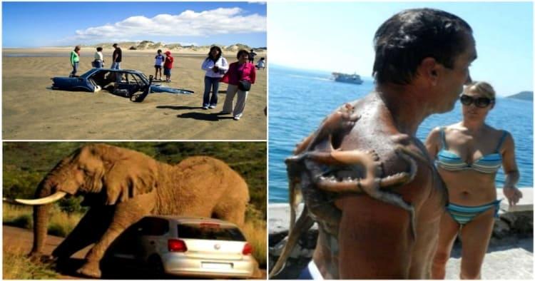 17 фотодоказательств о незабываемых впечатлениях из отпуска!