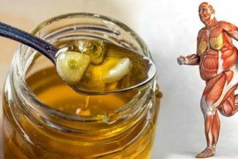 Что с Вами произойдет, если начнете есть мед каждый день
