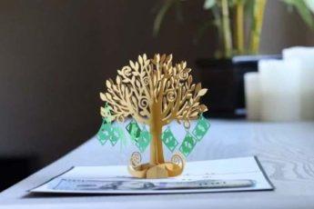 Как правильно посадить денежное дерево, чтобы оно приносило удачу?