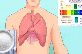У каждого в организме присутствуют раковые клетки. Как помешать им стать опухолью?