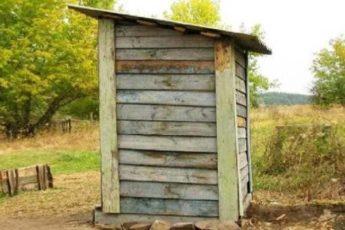 Сосед решил, что содержимое туалета — это лучшее удобрение. Рассказываю, что из этого вышло