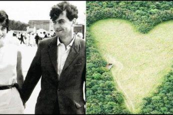 Муж посадил тысячу деревьев в честь скончавшейся жены: через 17 лет тайну дубового леса раскрыли