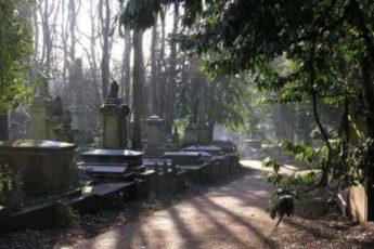 Что нельзя делать на кладбище и почему